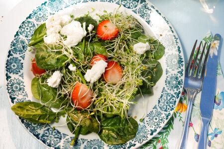 Silmusalaatti resepti - Suven suloisin mansikka-ricotta-salaatti