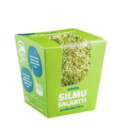 Alfalfa Silmusalaatti