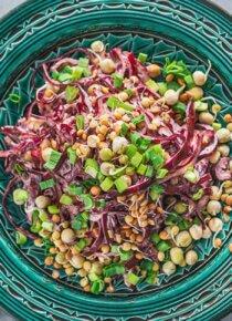 Punakaali-coleslaw tarjoilulautaselle keskellä pöytää, ympärillä Silmusalaatin versoja